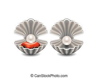 ouvert, seashell, perle