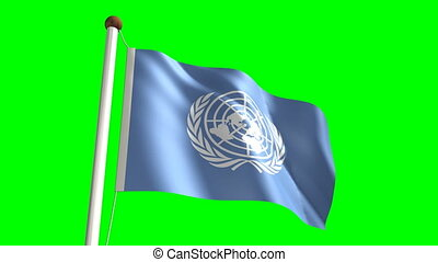 United Nations flag Loop and green s - 3D United Nations...