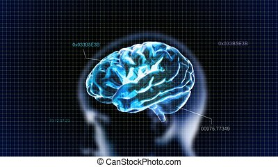 blue crystal brain with head and code