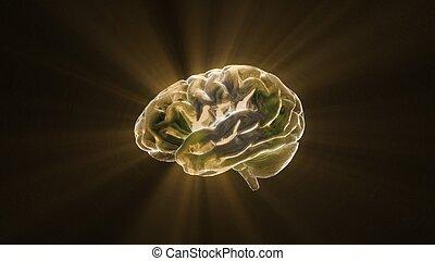 gold crystal brain still render