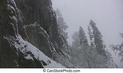 Snowy cliff face. - Looking up at a cliff face, during a...