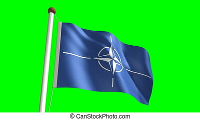 Nato flag Loop and green screen - 3D Nato flag video...