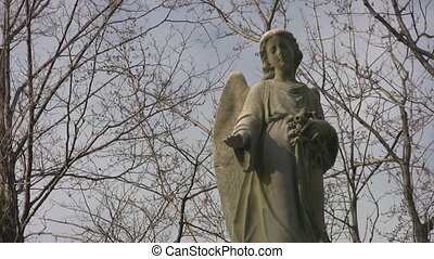 Winter angel. - A statue of a cemetery angel looks down....