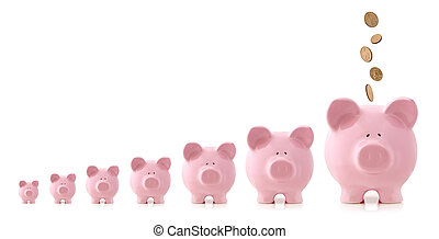 Investment Growth - Piggy Banks - Pink piggy banks...