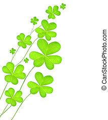 Green fresh clover - Green clover holiday border,...