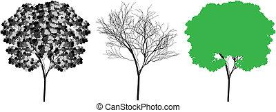 árbol, silueta, vector