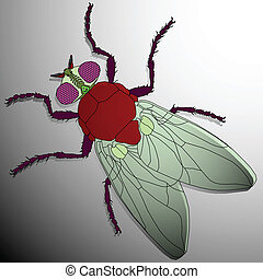 fly cartoon, abstract vector art illustration; image...
