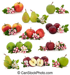 Fruit Collection - Large collection of apple, pear and plum...