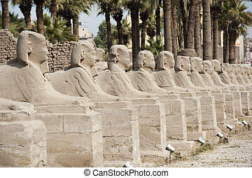 Row of sphinxes at Luxor temple - Row of ancient sphinxes at...