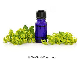 Ladies Mantle Herb Therapy - Ladies mantle herb flower...