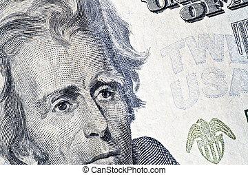 twenty dollars  - Close-up of a twenty dollars banknote