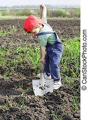 Little boy to dig with big shovel