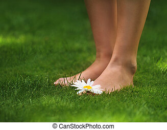 Happy feet - Woman legs with a daisy on the green grass
