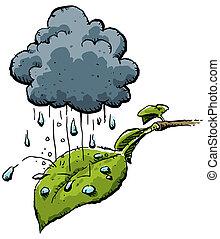 Rainy Leaf - A tiny cloud provides moisture to a single,...