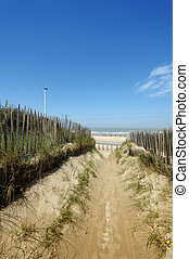A beautiful path through the dunes and Marram grass against...
