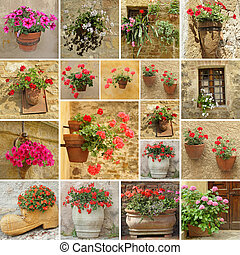 set of flower pots - collage with images of flowerpots with...