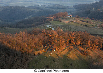 Slovenian countryside - View of Slovenian countryside in the...