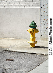 Yellow And Green Fire Hydrant In A City