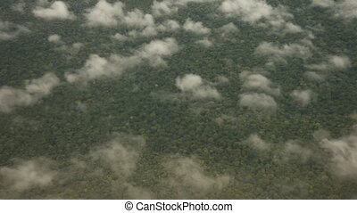 Flight Over Rainforest