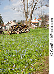 woodpile - Woodpile on the grass in the farm