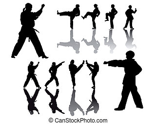 taekwondo-fighter-silhouette - taekwondo-fighter - vector