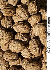 walnuts - Walnuts - macrophoto