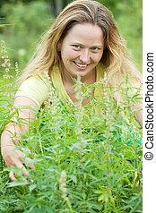 woman  at cannabis plant