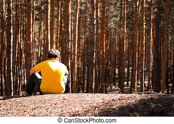 man in pine forest - man sitting in the pine forest