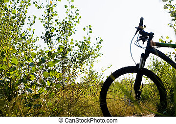 Mountain bike silhouette, ready for ride outdoors