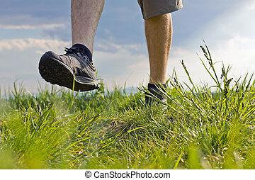 Walking on grass - Man walking on green summer grass