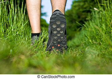 Man walking on green grass in forest