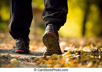 Hiking in autumn forest