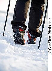 Nordic walking in winter - Woman exercising nordic walking...