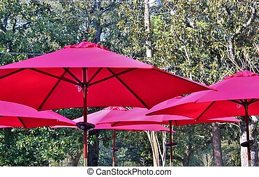 Red umbrellas at an outdoor cafe