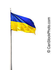 ukrainian flag - ukrainian national flag isolated on a white...