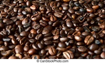 coffee beans - a lot of coffee beans moving in a circle