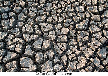 Shrinkage cracks - very arid land