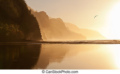 Misty sunset on Na Pali coastline - Albatros soaring over...