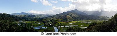 panorama,  Hanalei, Valle,  Kauai