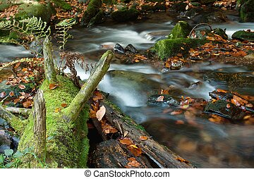 Autumn scene with cascading waterfall - beautiful cascade...