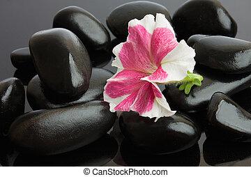 Spa with black stones
