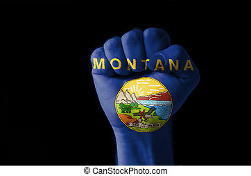 Fist painted in colors of us state of montana flag