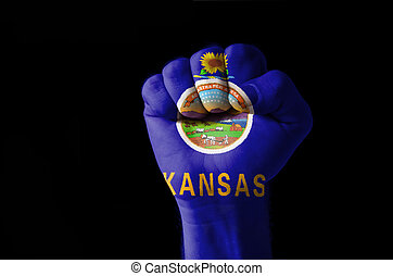 Fist painted in colors of us state of kansas flag - Low key...