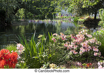 St James Park, UK