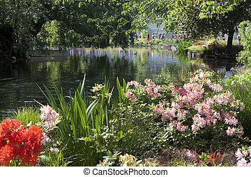 St. James Park, UK