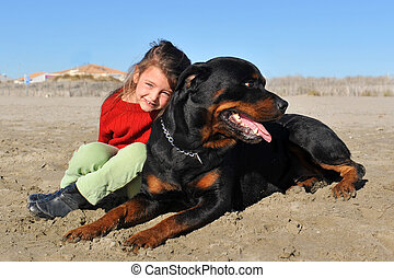rottweiler and child on the beach - portrait of a purebred...