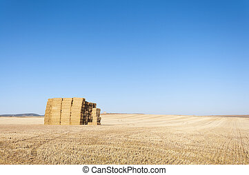 Bale of hay in an agrarian landscape in Ciudad Real...