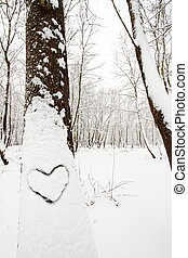 Heart shape on a snow covered tree