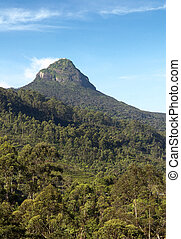 Adams Peak, Sri Pada - The view on top of the mountain Adams...