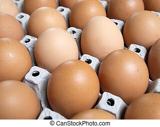 many brown eggs - Carton of fresh many brown eggs